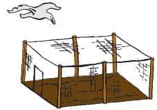 garden-cage