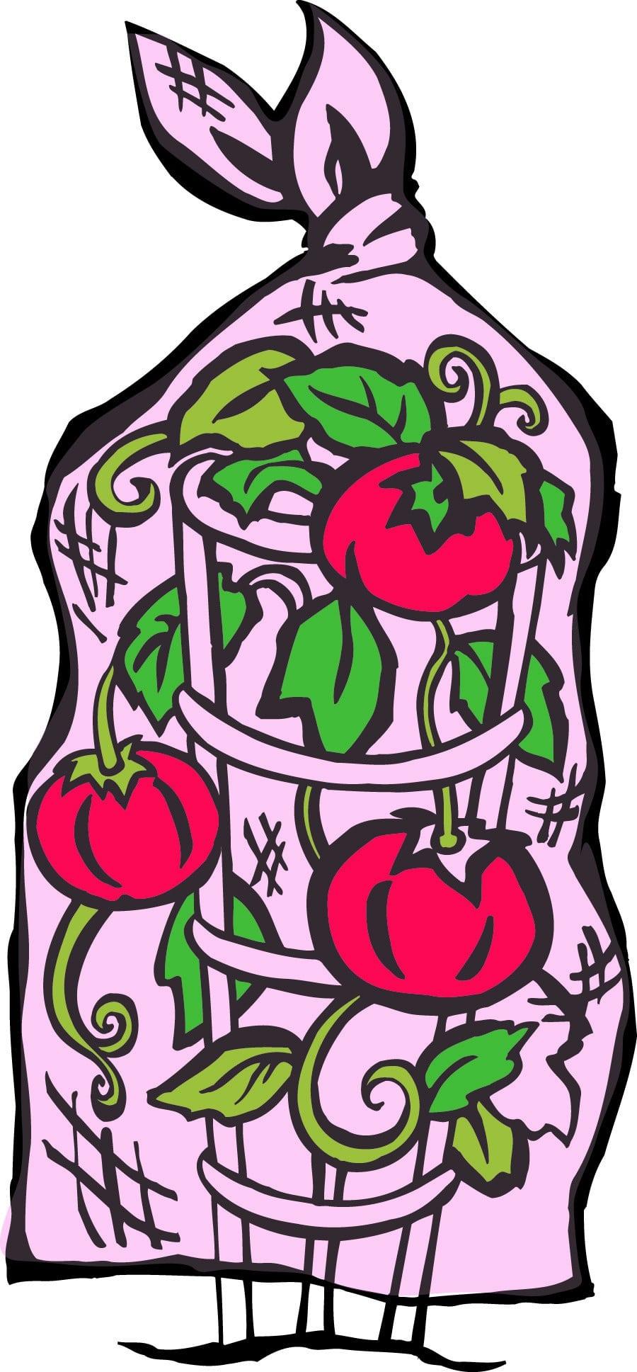 tomato-cage-color-1