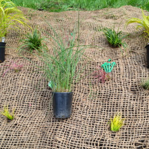 Jute Erosion Control Mesh Application